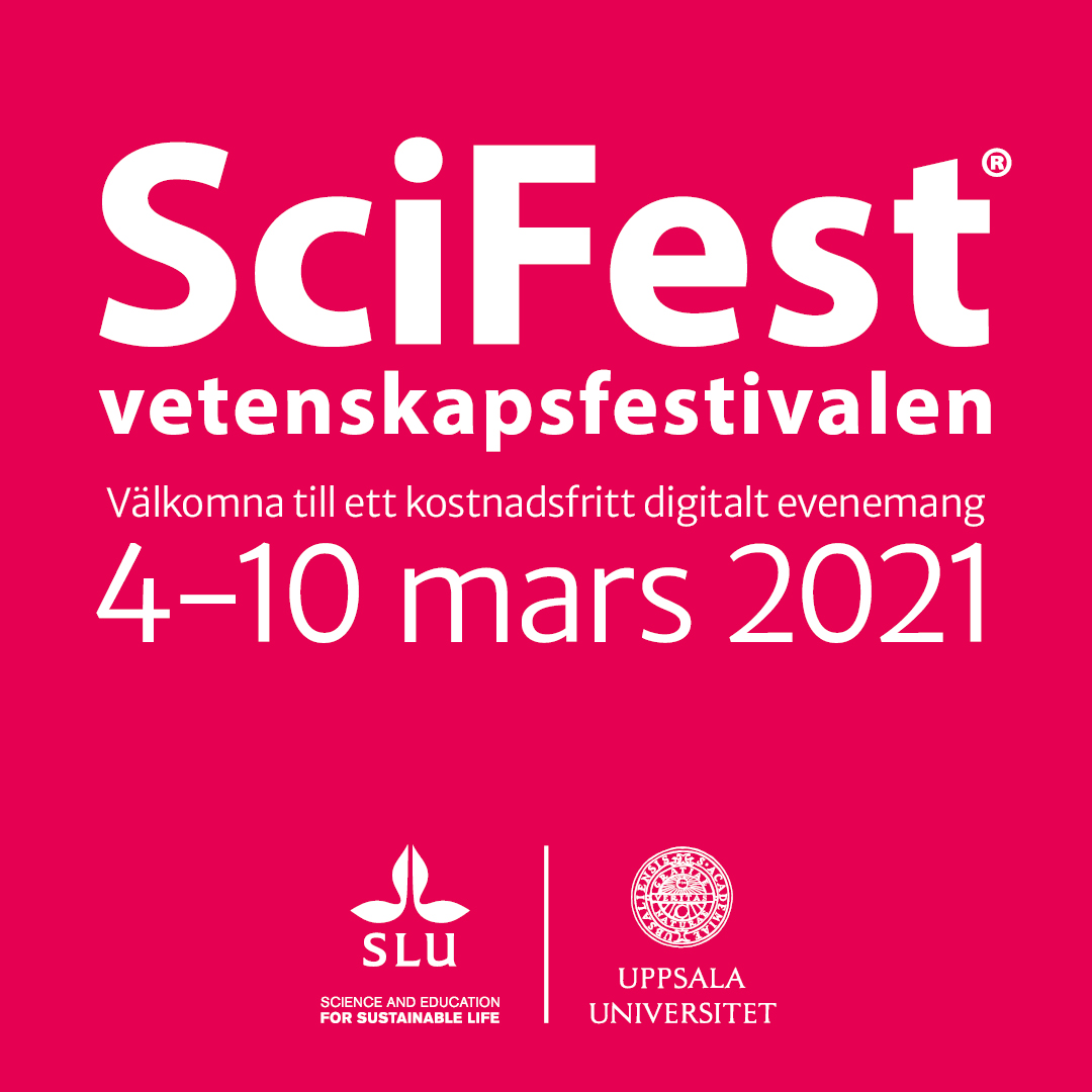 SciFest 2021 –  a science festival online!